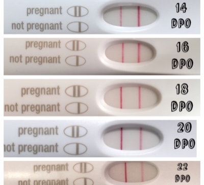 Honest Opinions On Slow Frer Progressions 14 18dpo With Pic Countdown To Pregnancy