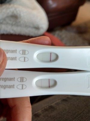 2 Positive Frer Then Digital Not Pregnant