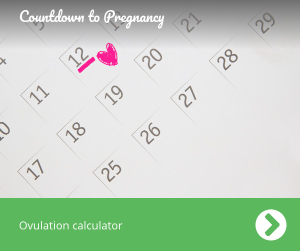 Ovulation calculator - Countdown to pregnancy