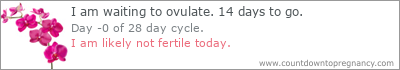 http://www.countdowntopregnancy.com/tickers/dpo-1415340000z5z28z15.png