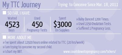 Fertility Monitors Countdown To Pregnancy